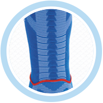 dr-petstar-sostegno-colonna