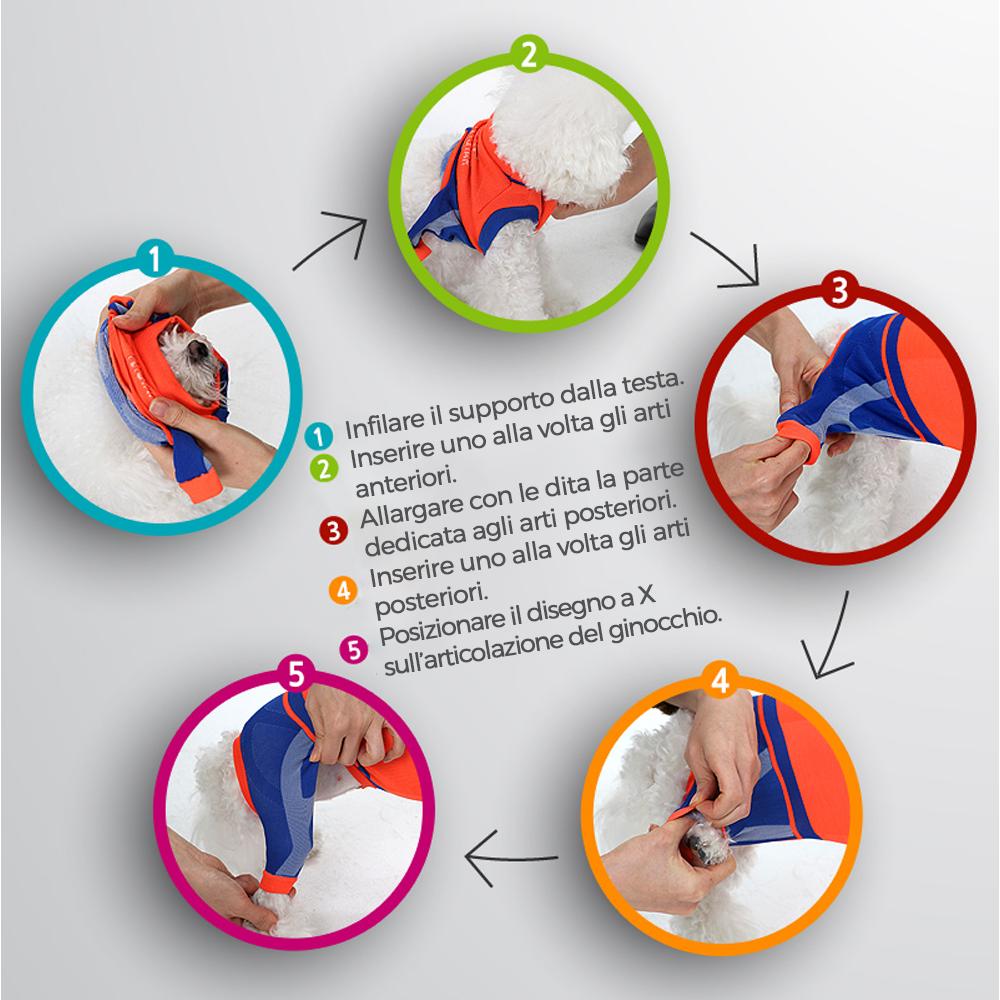 Come indossare il supporto articolare (tutina) Dr. Petstar